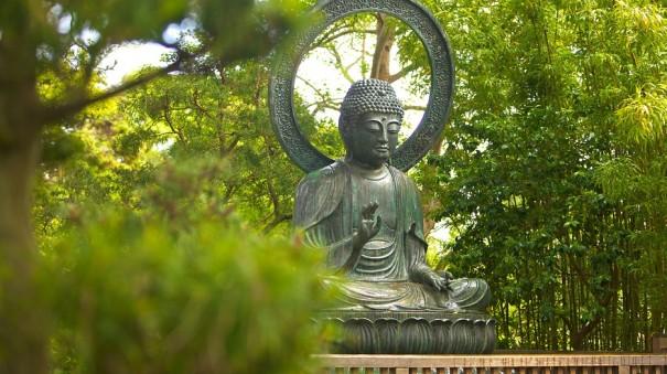 japanese-tea-garden-22413
