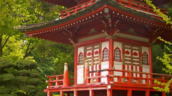 japanese-tea-garden-22414
