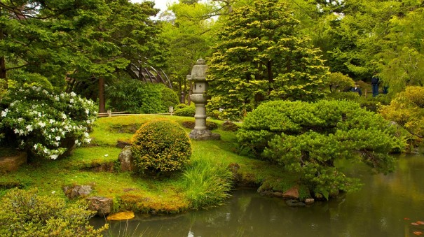 japanese-tea-garden-22423