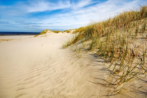 ameland-island-and-beach-sand-dunes-with-north-sea-in-the-background