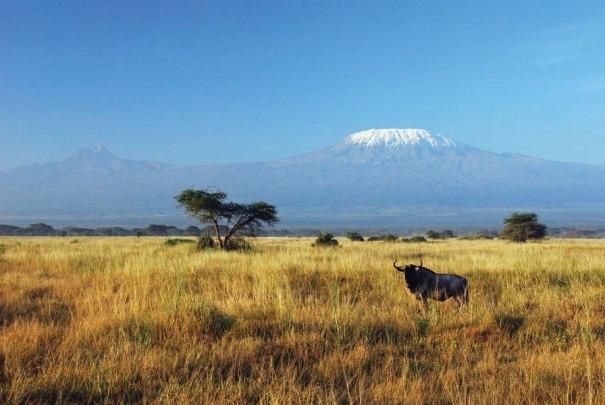 kilimanjaro-climb